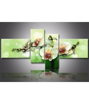 Орхідея на зеленому фоні