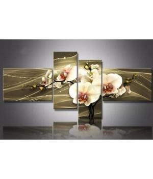 Орхідея на коричневому фоні